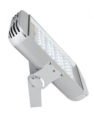 Светильник светодиодный ДПП 01-110-50-Г65